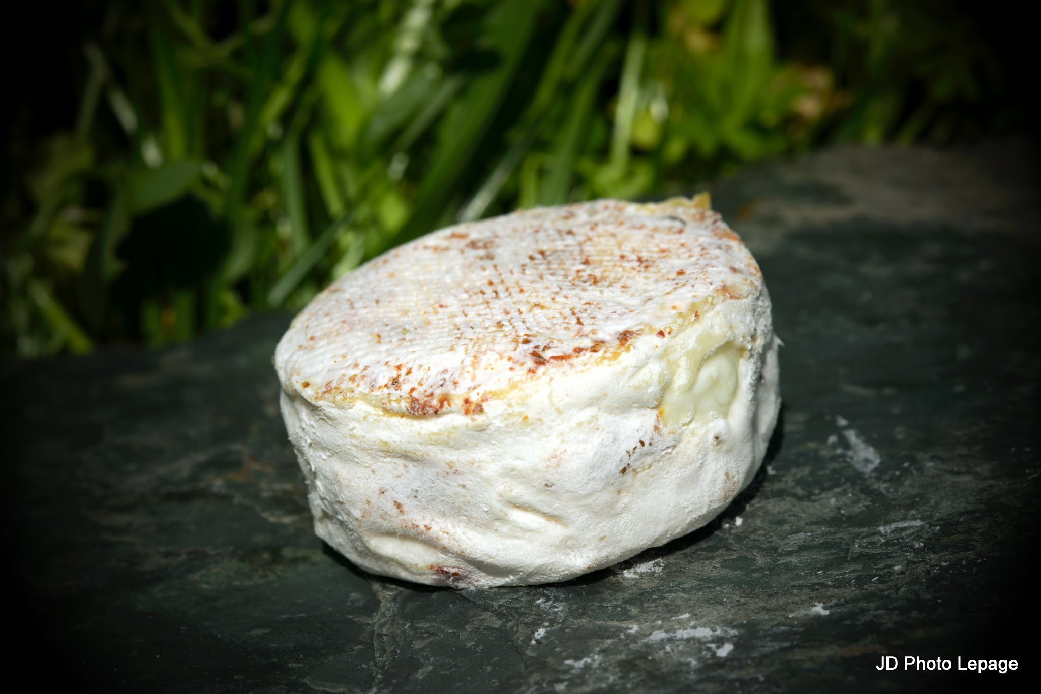 periole fromage_197